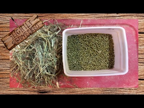 Meat Rabbit Diet, What, How Much, And When To Feed: The SR Rabbit Update For 10-4-16