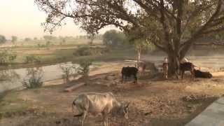 Rawal, a birth place of Radharani