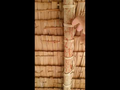 A Foreigner in the Philippines amazed on how filipino build a Nipa hut ( Filipino Nipa Hut )