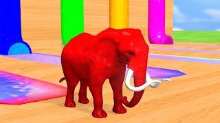 색칠 게임 거대한 애완 동물 | 자녀 교육 #34