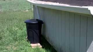 Diy, $45 Rain Barrel Water Collection!! - Che