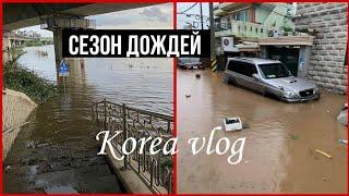 Потоп в Корее /Что происходит?/Сезон дождей 2020/KOREA VLOG