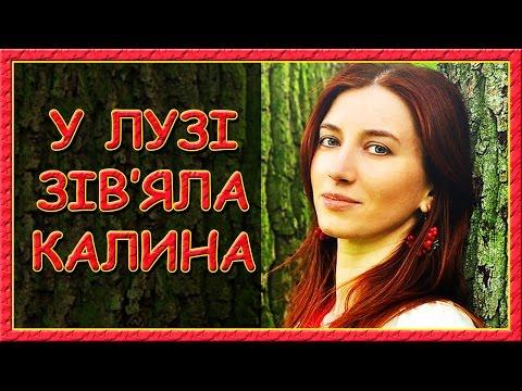 Українські пісні про кохання. У лузі зів'яла калина