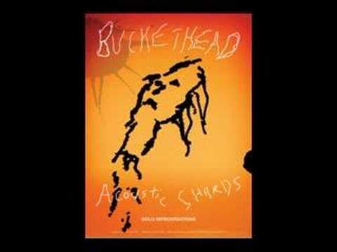 Buckethead  Who Me