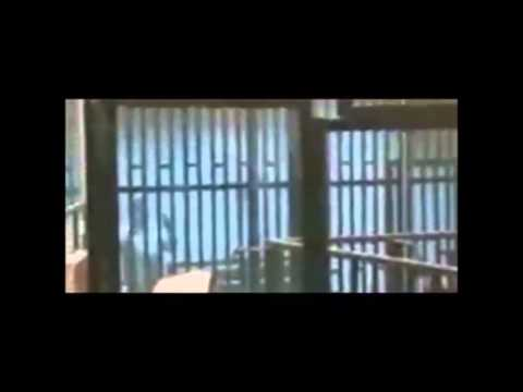 Ucapan Presiden Mohamad Morsi Bila Dijatuhkan Hukuman Mati