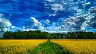 Oswin Mackintosh ( Lorne Balfe) - Perfect Ten
