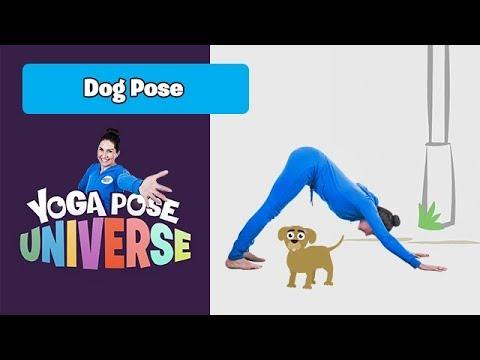 dog pose  yoga pose universe  youtube