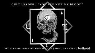 "Cult Leader ""You Are Not My Blood"""