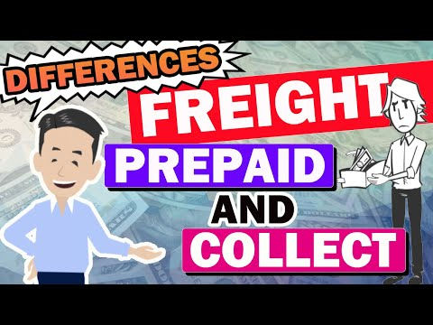 What is the difference between Freight Prepaid and Collect? Necessary knowledge for Logistics!