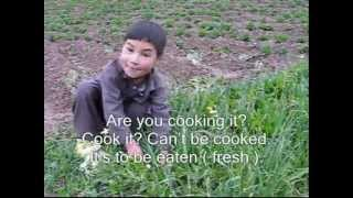 A chance conversation with a little Afghan girl