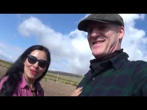A Field Of Quinua In Bolivia - Un Cultivo De Quinoa En Bolivia