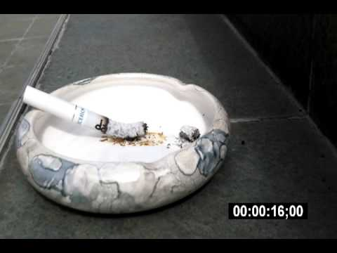 dai5.bg - Cigarette