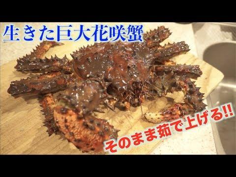 巨大花咲蟹を豪快にそのまま茹でたら大きすぎてパニックになった!!!