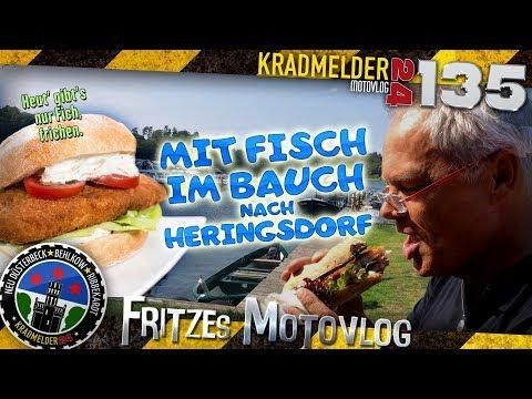 mit-fisch-im-bauch-nach-heringsdorf-✫-von-der-müritz-nach-usedom-zur-polnischen-grenze-◙-mv135