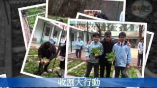 東華三院馬振玉紀念中學 學生活動