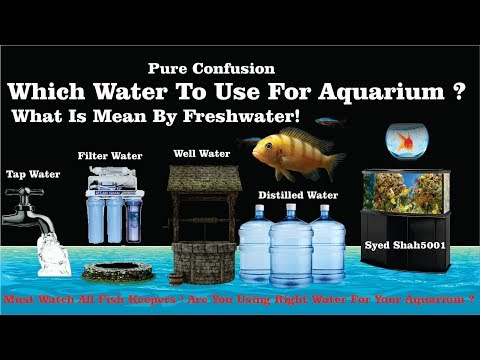 Which Water To Use For Aquarium What Is Mean By Freshwater? Tapwater Vs Wellwater