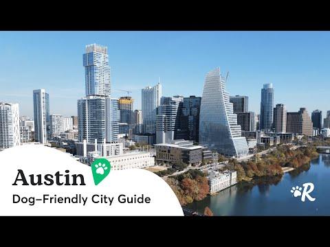 Dog Friendly City Guides: AUSTIN | Rover.com