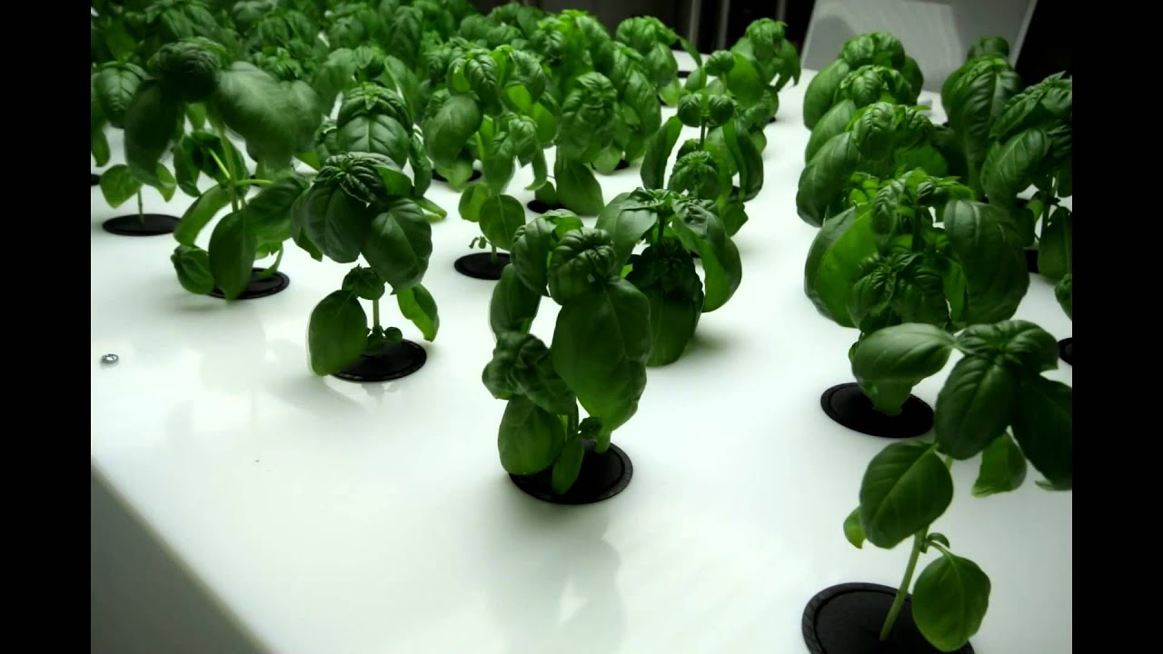 how to make a shelt for indoor farming