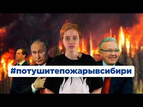 Пожары в Сибири: почему их не тушат? | Саша Семенова