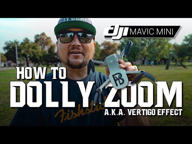 DJI Mavic Mini / How to DOLLY ZOOM! / Tutorial
