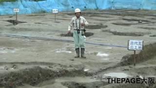 由義寺は実在した? 八尾・東弓削遺跡から古代瓦出土