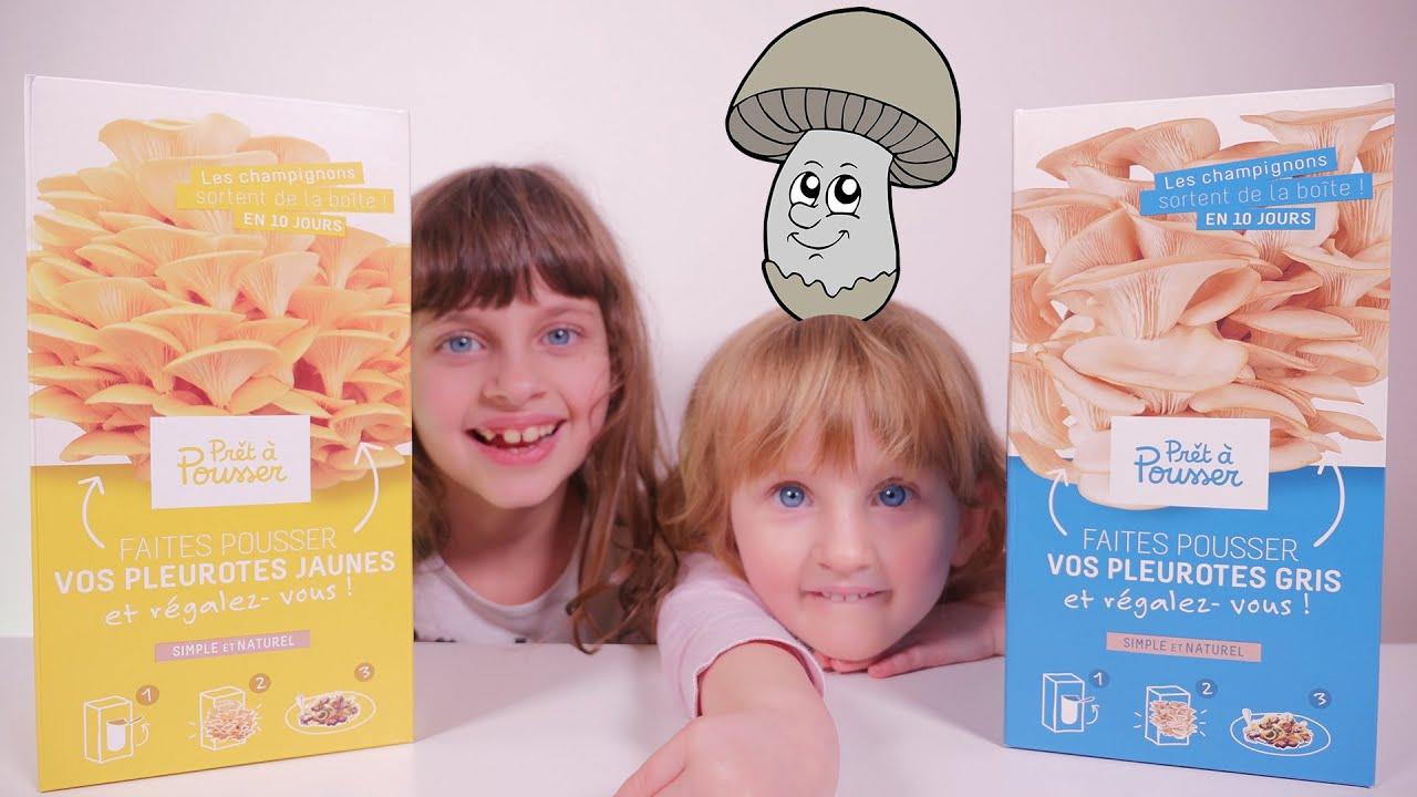 Tuto faire pousser et manger ses propres champignons - Faire ses propres stickers muraux ...