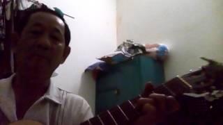 Dòng nhạc bolero. Guitar vào văn Tâm
