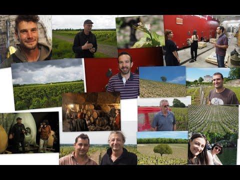 Loire Valley Wine Adventure