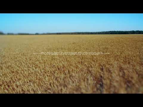 ATB LLTL Cutdown barley Final_prores