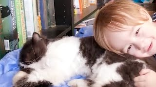 Baby And Cat Fun And Cute #6  Funny Baby Videos