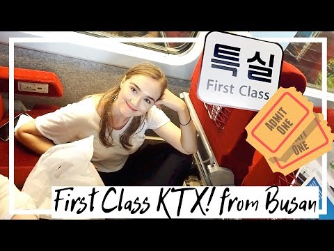First class KTX Train from Busan!! - Vlogmas Day 8