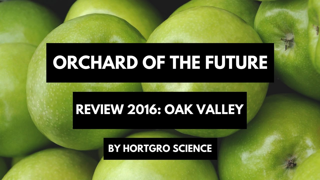 orchard of the future review 2016 oak valley elgin youtube