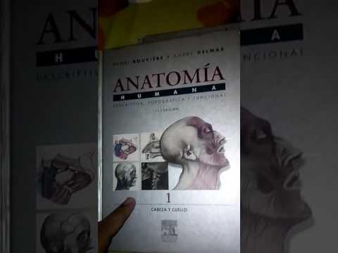 Colección Libros De Anatomía Humana Rouviere 11 Va Edición (mercadolibre)