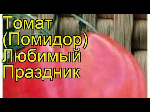 Томат обыкновенный Любимый Праздник. Краткий обзор, описание характеристик, где купить семена