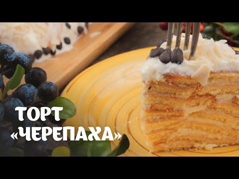 """Торт """"Черепаха"""" простой видео рецепт   простые рецепты от Дании"""