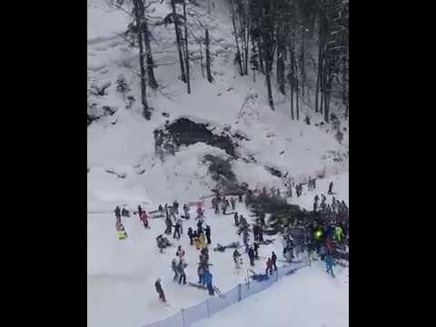 2018-02-15 На Красной поляне упавшее дерево придавило девушку.