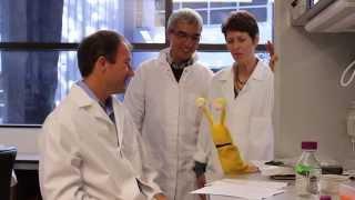 UC Santa Cruz Banana Slug Genome Project