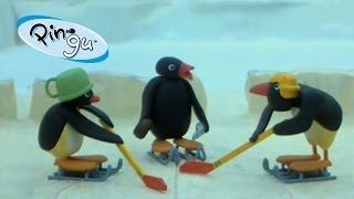 Pingu - Pingu speelt hockey