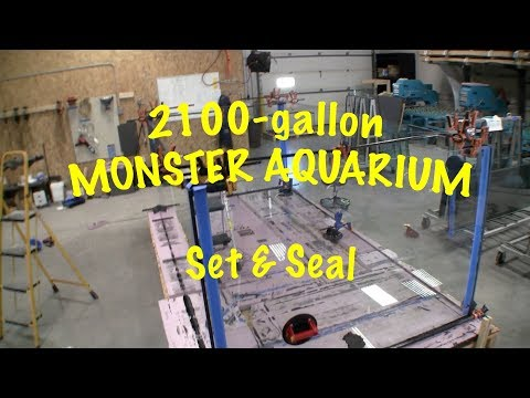 Building A 2100-Gallon Aquarium