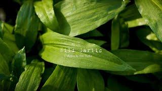 Wild Garlic (A film with the BMPCC4k)
