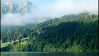 Bergwald ist Schutzwald (lange Version)
