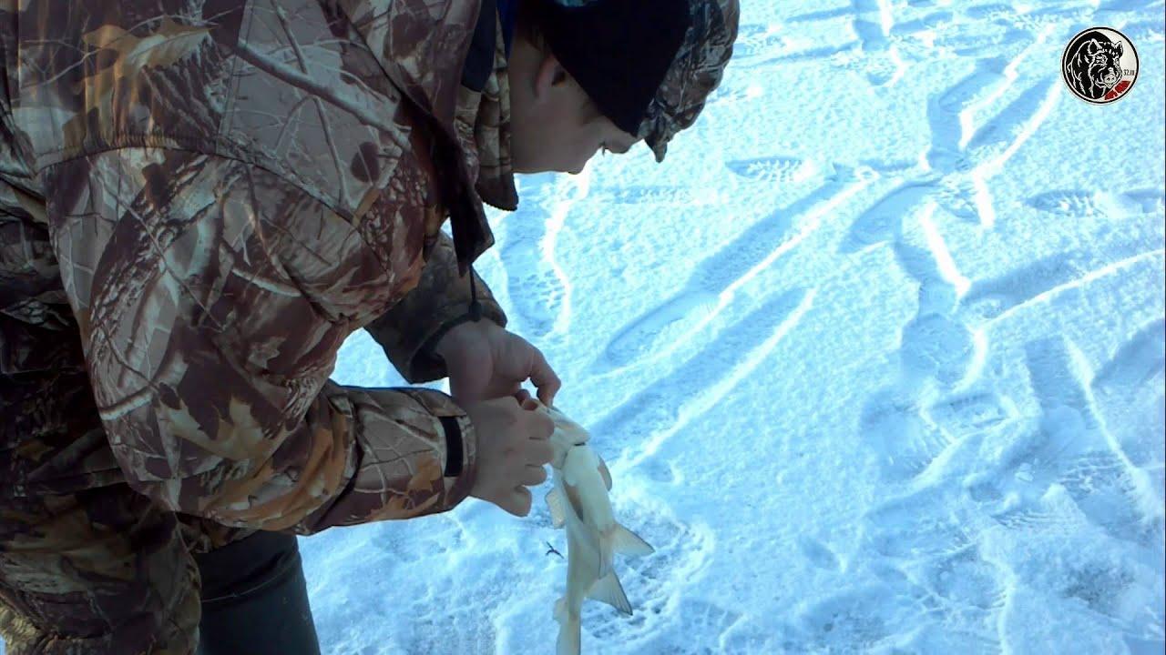 """Зимняя рыбалка на реке """" ДЕСНА""""- ВЫГОНИЧИ!"""