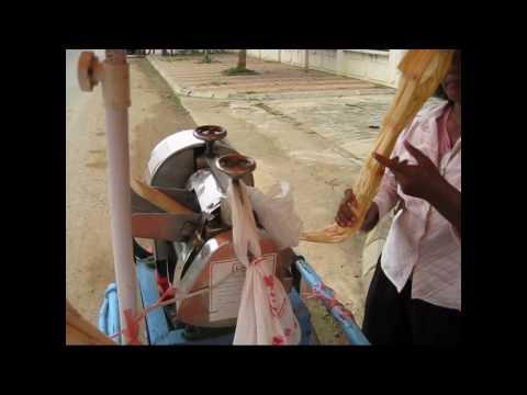 Sugar Cane Drink Battambang, Cambodia