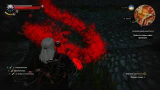 witcher3 Новиград Несвободный Новиград 2