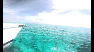 Isla Mujeres Catamaran 2015