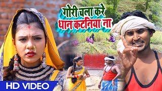 HD Video #गोरी चला करे धान के कटनिया #Amit Mastana और Khushbu Raj का #कटनी गीत - New Live Geet 2019