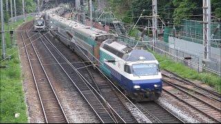 【香港の鉄道】MTR東鉄線 沙田駅付近を走行するMLR形,SP-1900形,広九直通列車