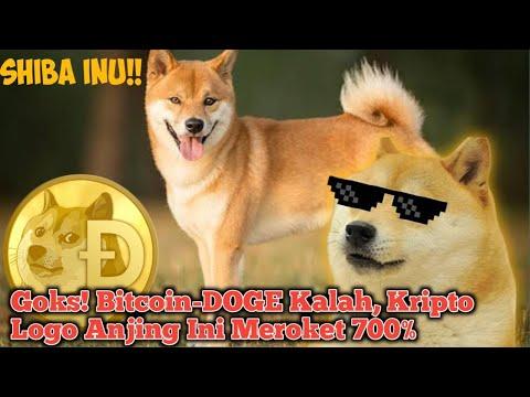 Goks! Bitcoin-DOGE Kalah, Kripto Logo Anjing Ini Meroket 700%