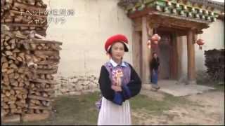 チベット族の女性 ツームー 18歳