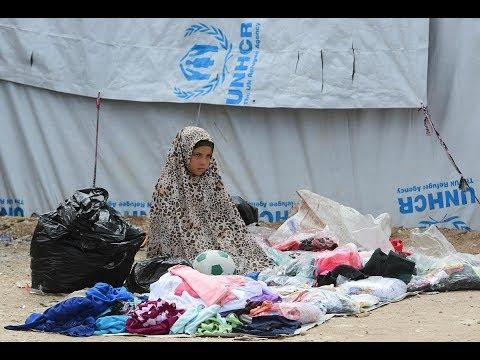 دعوات لإنهاء أزمة 2500 طفل محتجزين في مخيم الهول  - نشر قبل 4 ساعة